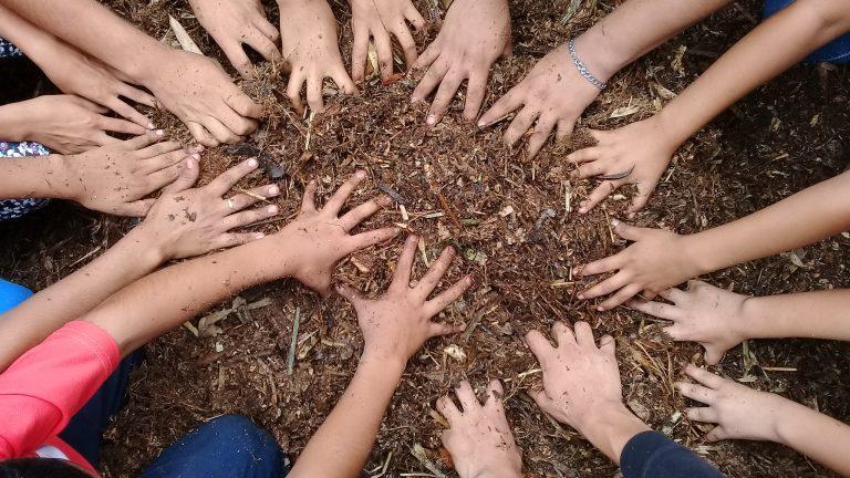 preparacion de microorganismo de montaña con jovenes del balsamar